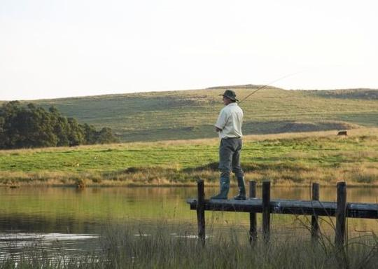 Bellwood self catering cottages - fishing