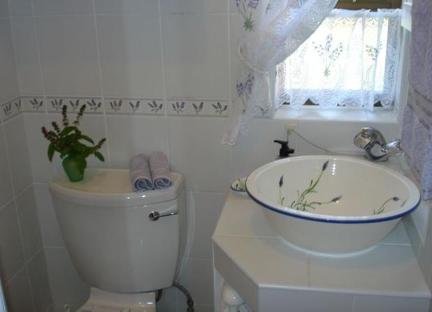 Cape Country Cottage - bathroom