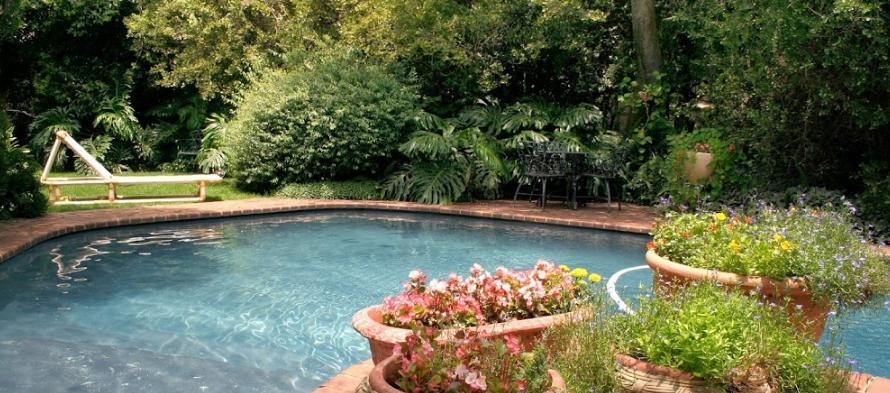 Apricot Hill - pool