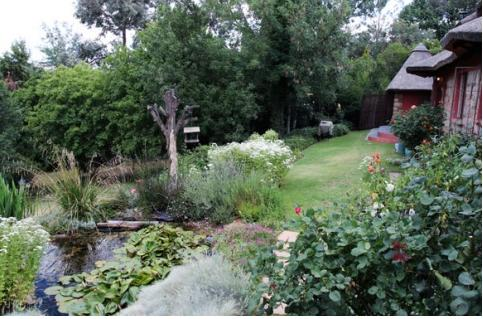 Peter Bonney Clarens - garden