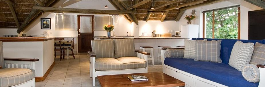 Eirene self catering - lounge