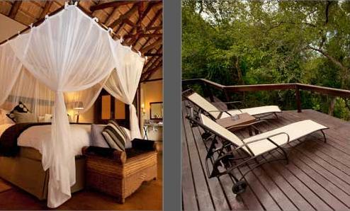Elephant Plains - verandah