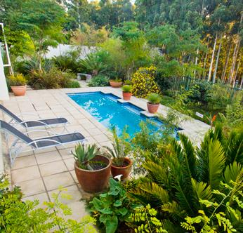 Apple & Spice Guesthouse - pool