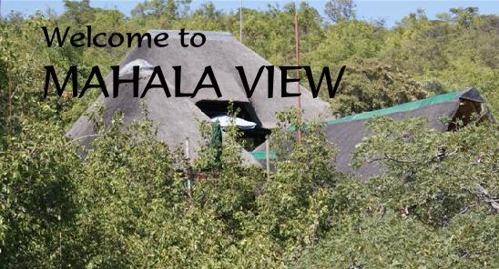 Mahala View - logo main