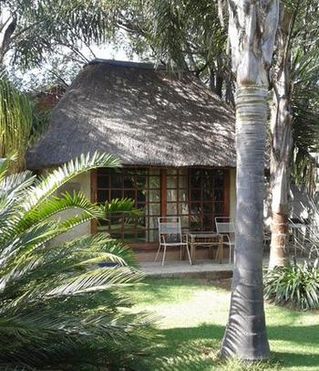 Modjadji Guest House - cottage
