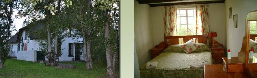 Plover Cottage - bedroom