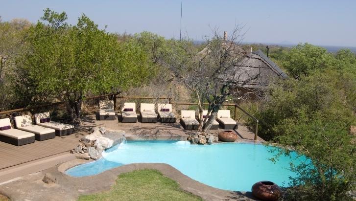 Royal Madikwe - swimming pool