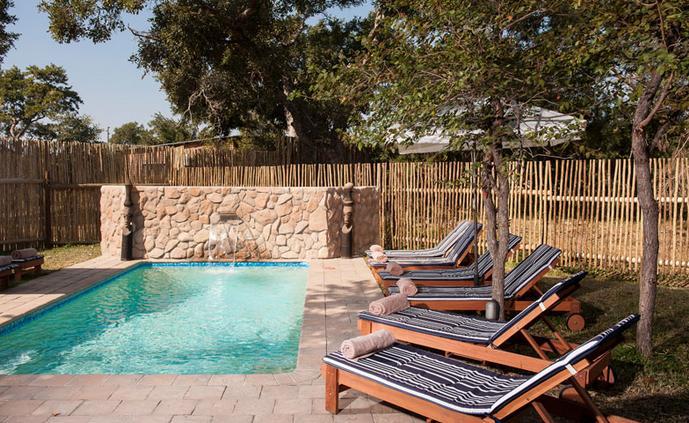 Simbavati River Lodge - swimming pool