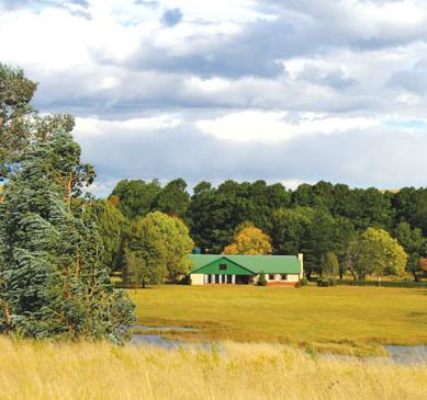 Stoneyhall Farm - view