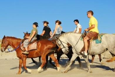 The Beach Camp - horse riding