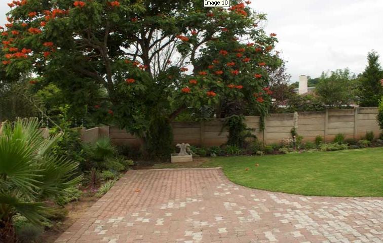 Nthatuoa Guest House - garden