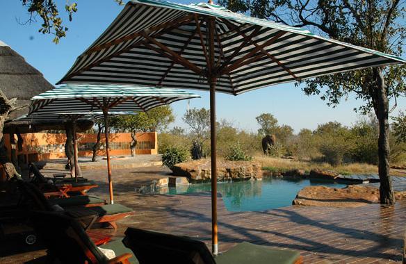Rhulani safari lodge - swimming pool
