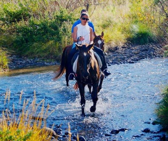 Sani Pass Hotel - horseriding