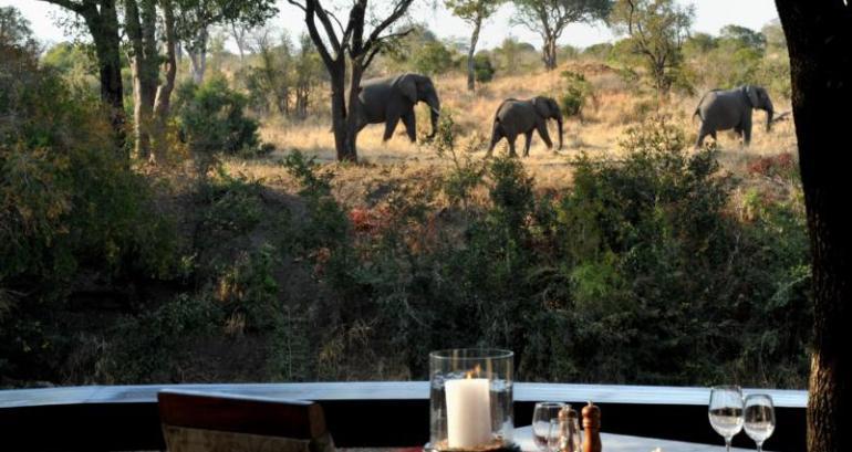 Imbali Safari Lodge - elephants