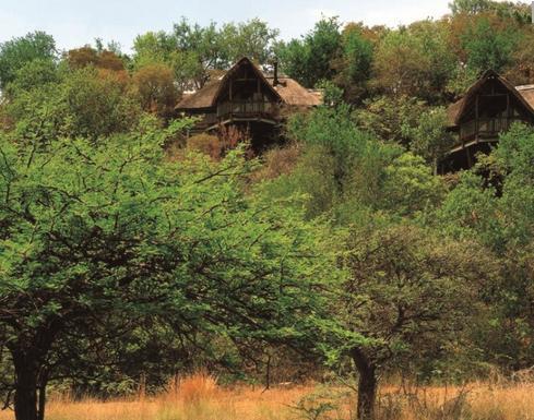 Tshukudu Bush Lodge - main