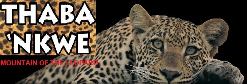 Thaba Nkwe - logo main