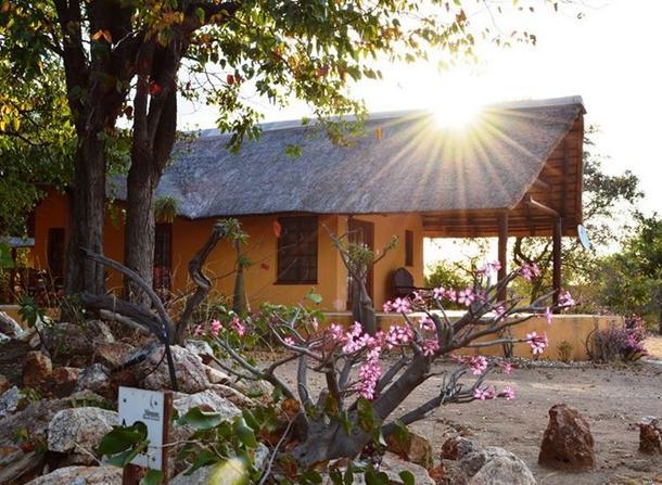 Silonque Bush Lodge - main