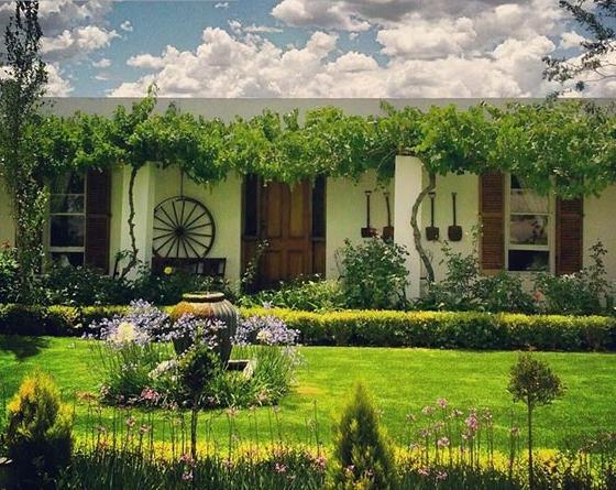 Cape Karoo Guesthouse - garden