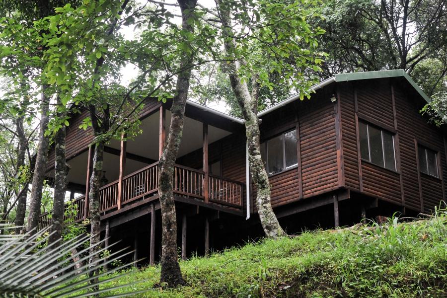 _Forest Bird Lodge - main