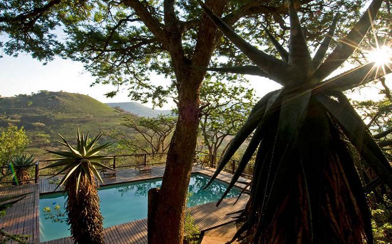 Three Trees - pool