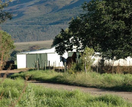 Lismore Farm - farm