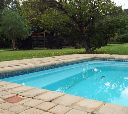 Loebies - pool