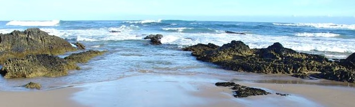 Sea Why - Sea