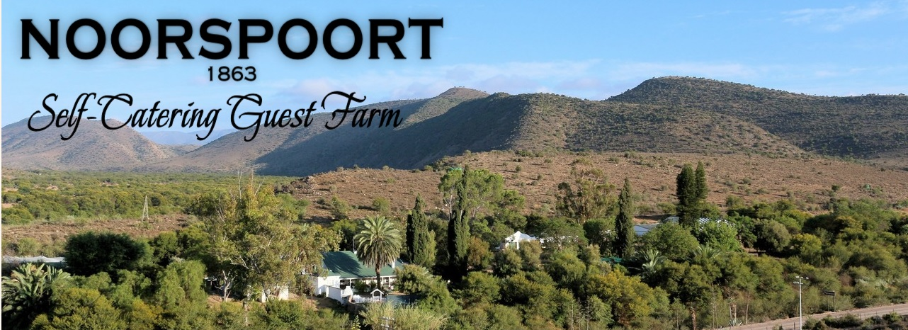 Noorspoort Guest Farm - logo and main