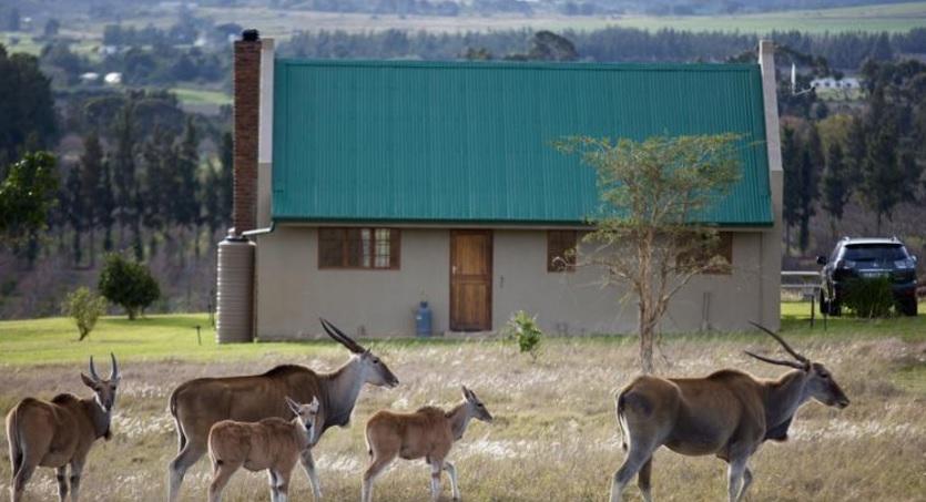 Kwetu Guest Farm - cottage