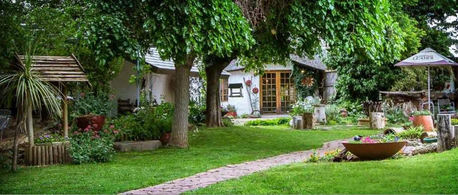 Morning Glory Cottage - main