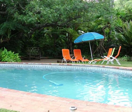 Nuanetzi Game Lodge - pool