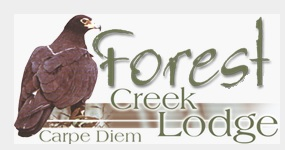 Forest Creek Lodge - picture logo