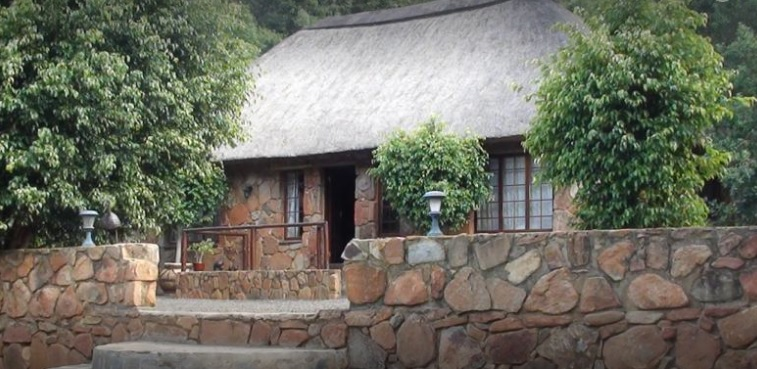 Forest Tree Lodge