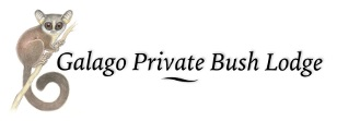 Galago Private Bush Lodge - logo