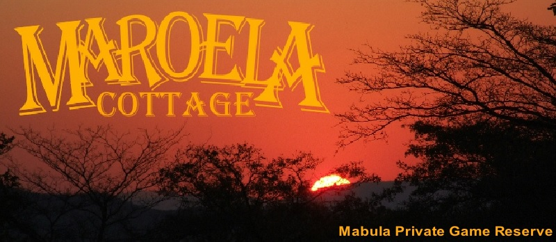 Maroela Cottage - logo