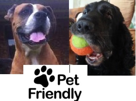 Pet Friendly Accommodation
