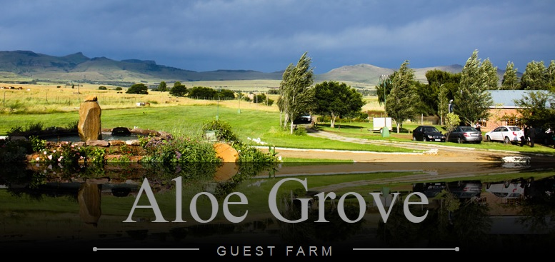 Aloe Grove Guest Farm - main