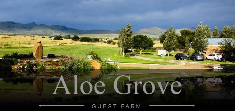 Aloe Grove Guest Farm - main